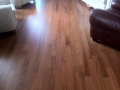 Engineered Jatoba Hardwood Floor