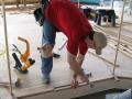 Installation of Carousel Floor, Fort Edmonton Park