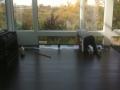 Applying finish to black oak floor
