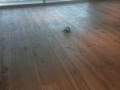 Hand-scraped Hickory Hardwood Floor Installation