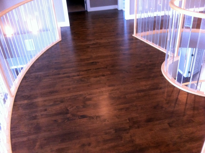 hardwood floor refinishing edmonton carpet review